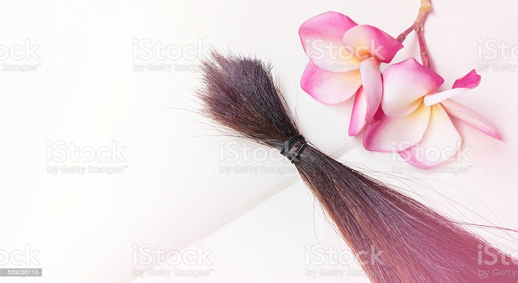 Bundle hair cut fasten on blank note book with flower stock photo