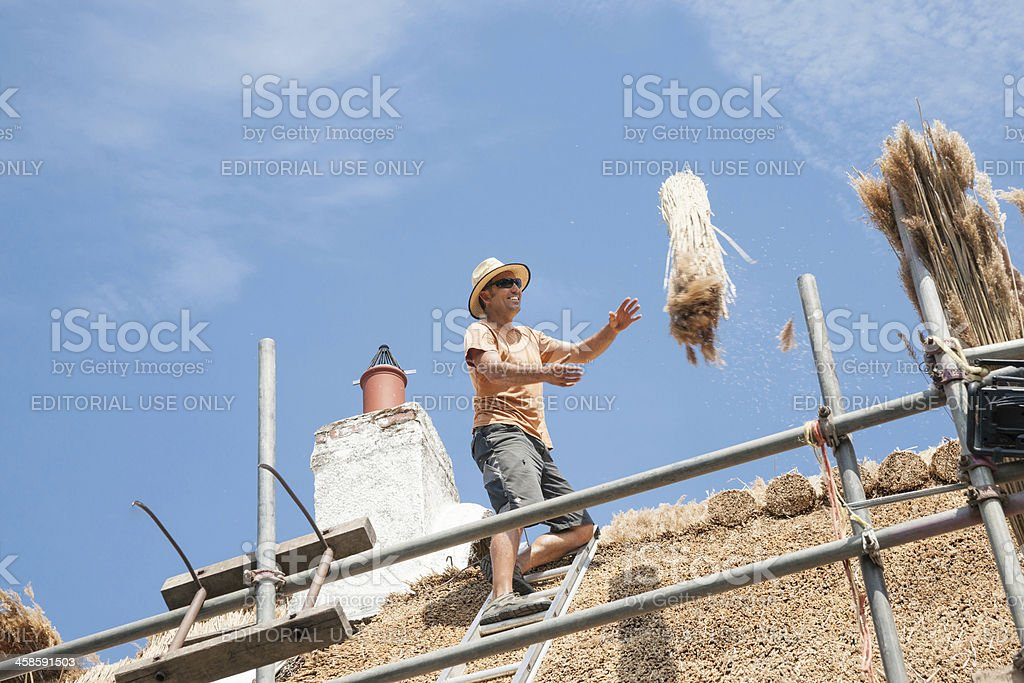 Bundle of reeds thrown to thatcher on rooftop. stock photo