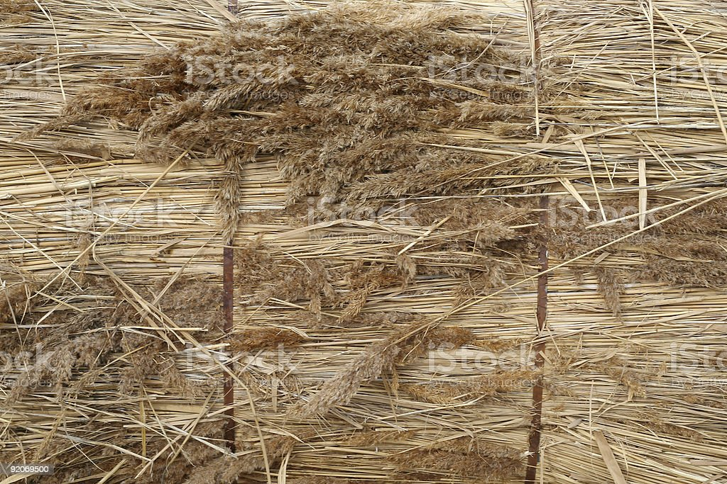 Bundle of thatch royalty-free stock photo