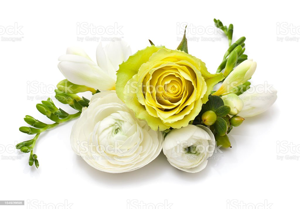 Bundle of white and yellow roses in white background royalty-free stock photo