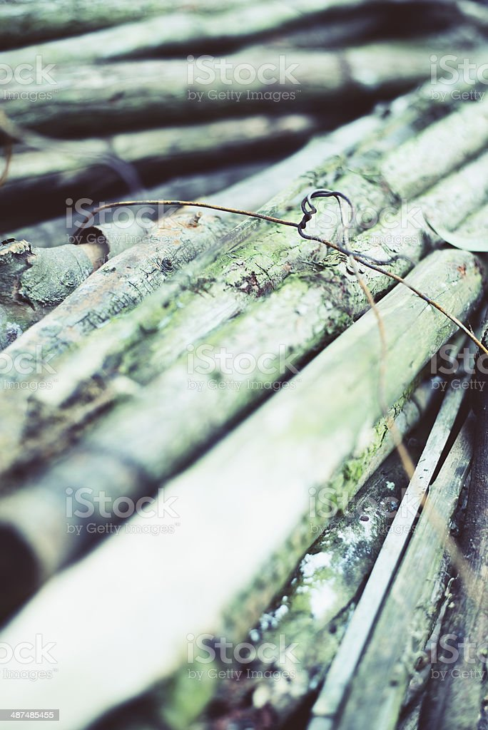 Bundle of Wood Tied with Wire royalty-free stock photo