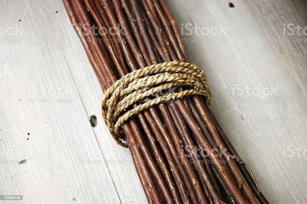 Bundled Branches royalty-free stock photo