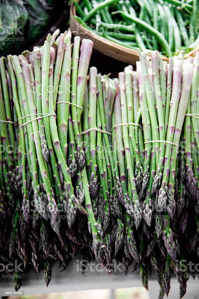 Bundles of fresh asparagus on display at a farmers market stock photo