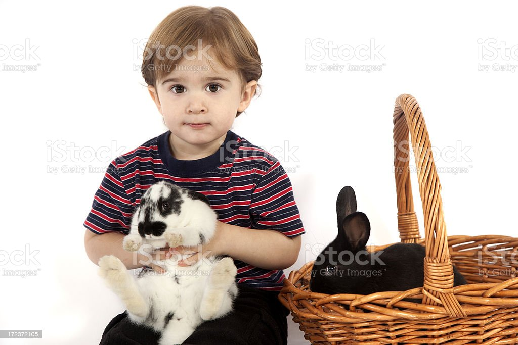 Bunnies for Easter royalty-free stock photo