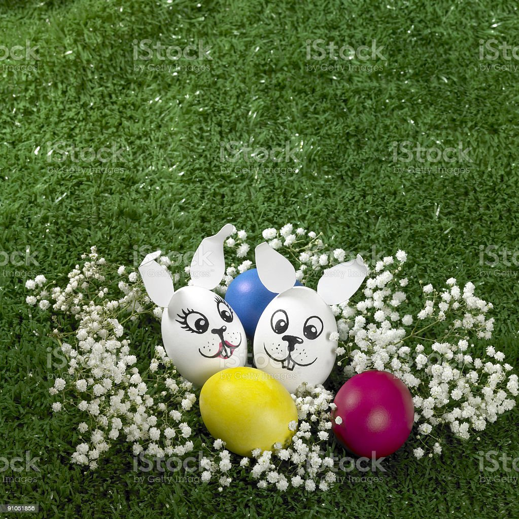 bunny Easter eggs royalty-free stock photo