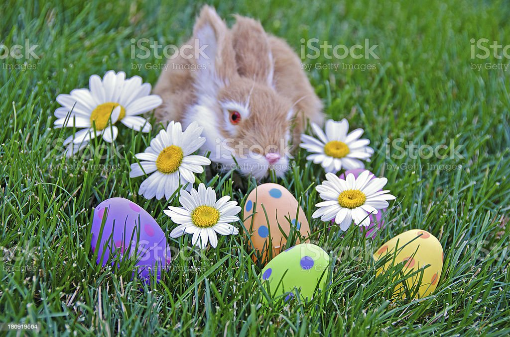 bunny with Easter eggs royalty-free stock photo