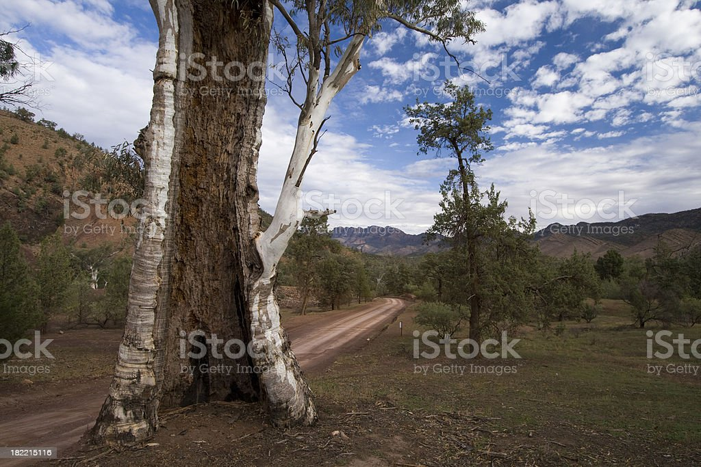 Bunyeroo Gorge stock photo