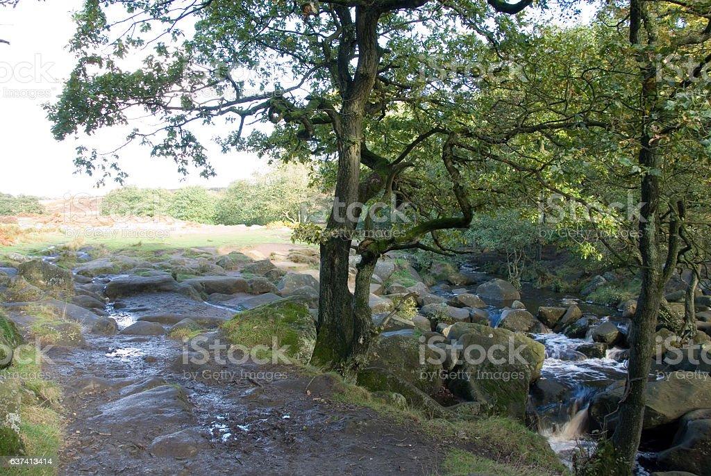 Burbage Brook on Longshaw Estate, Peak District, UK stock photo