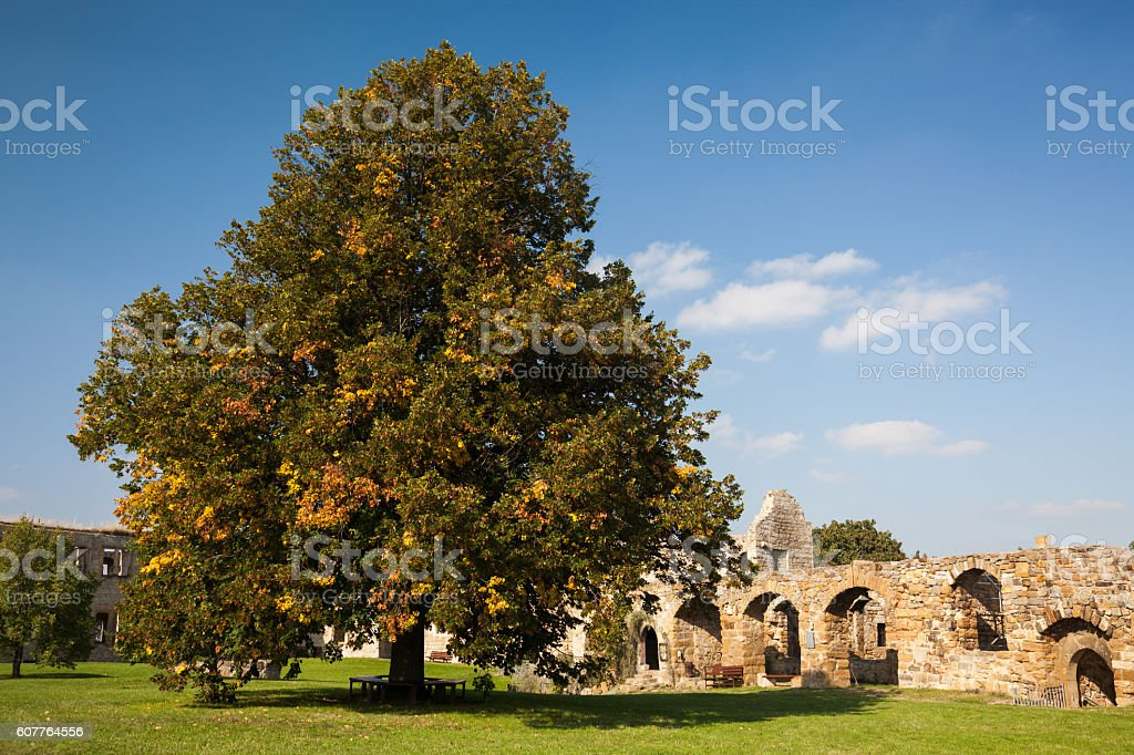 Burg Gleichen - Castle Ruin Landscape in Germany stock photo