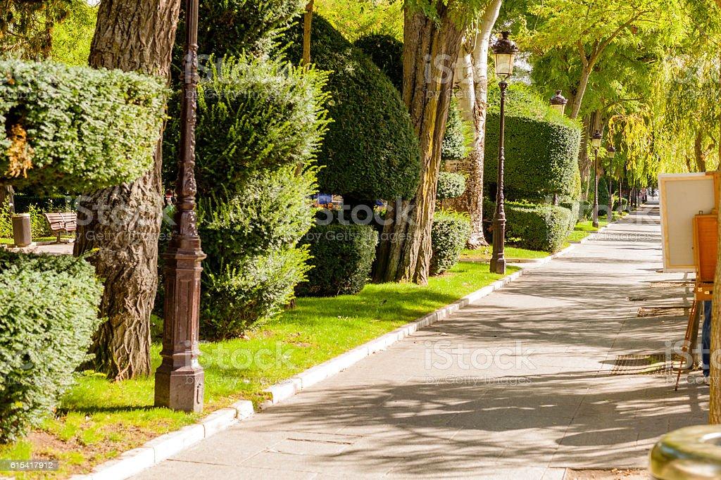 Burgos, Spain. Topiary stock photo