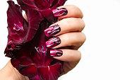 Burgundy manicure with gladiolus.