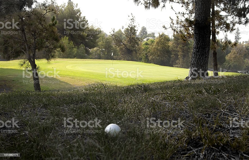 Buried golf ball in the rough stock photo
