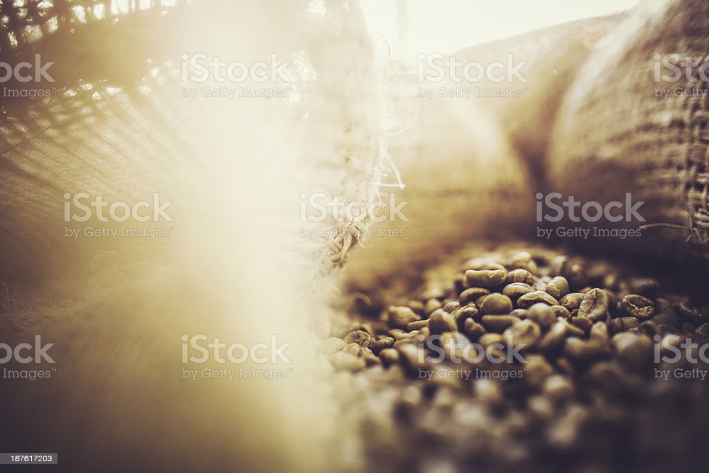 Burlap Bags of Green Coffee Beans stock photo