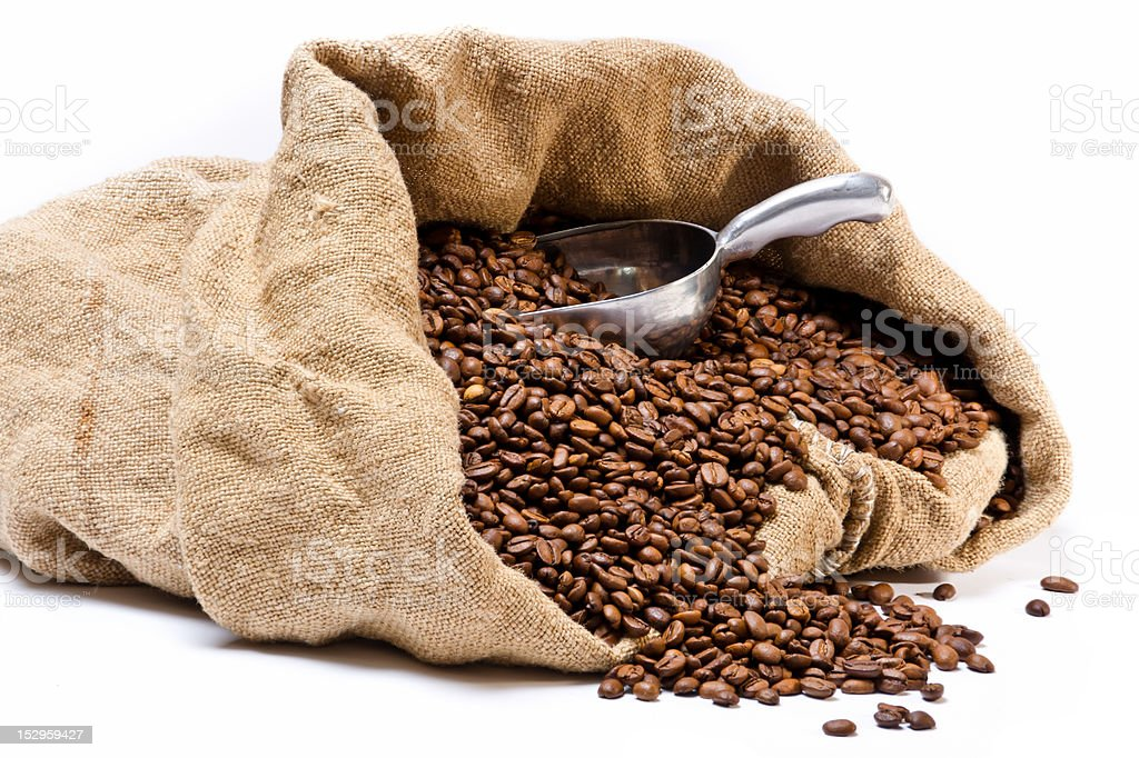 Burlap sack full of coffee beans with metal scoop stock photo