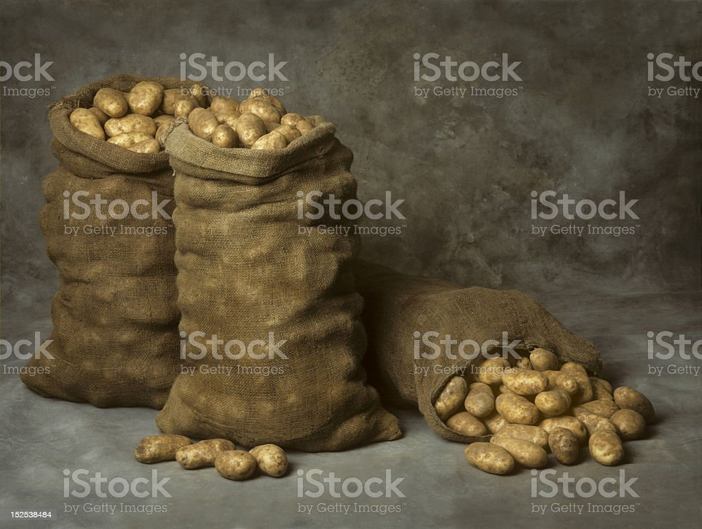 Burlap Sacks of Potatoes stock photo