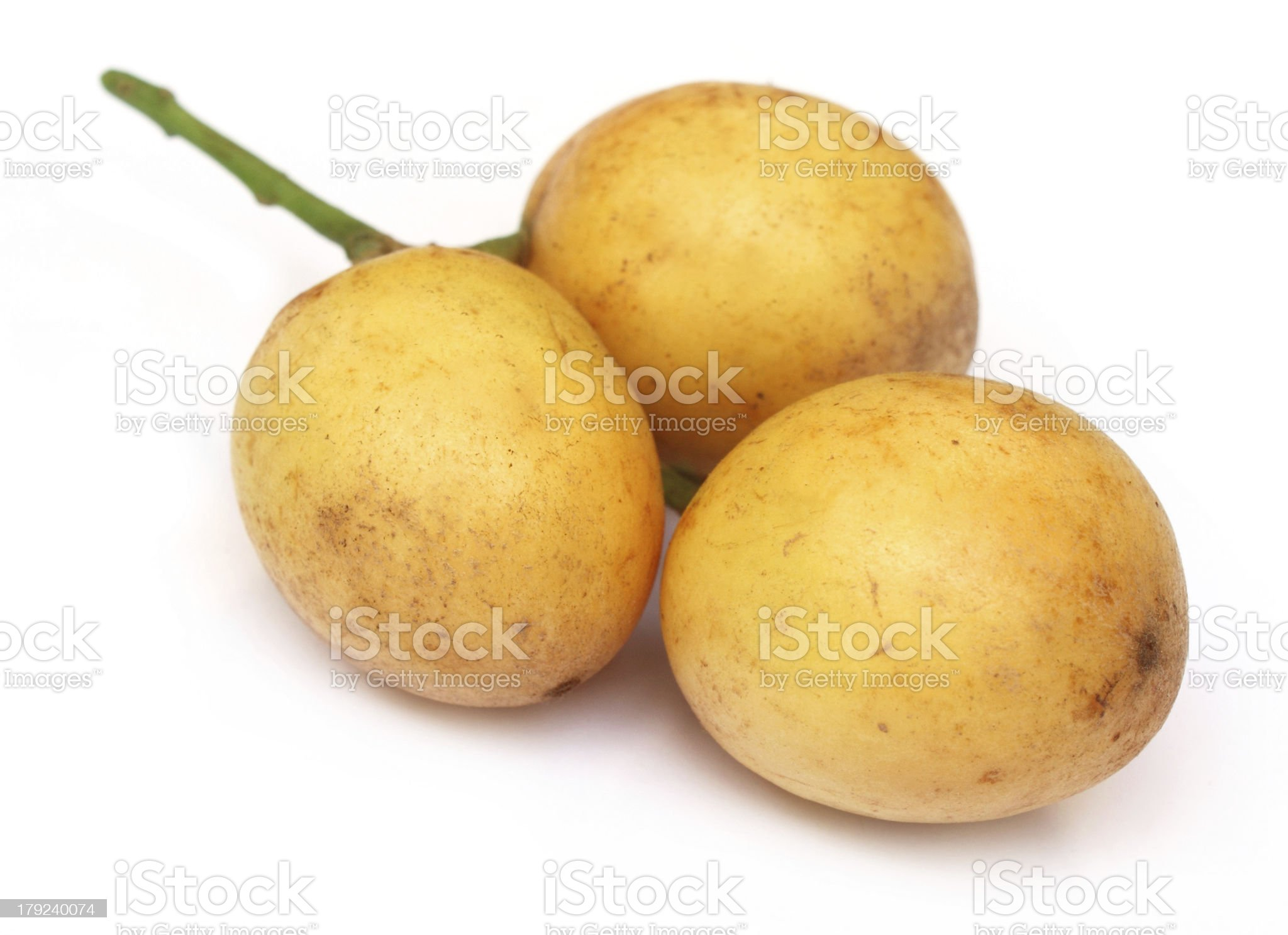 Burmese grapes or lotkon royalty-free stock photo
