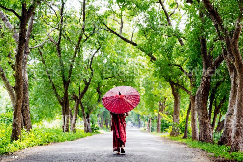 Burmese Monk Walking Along Green Alley Myanmar stock photo