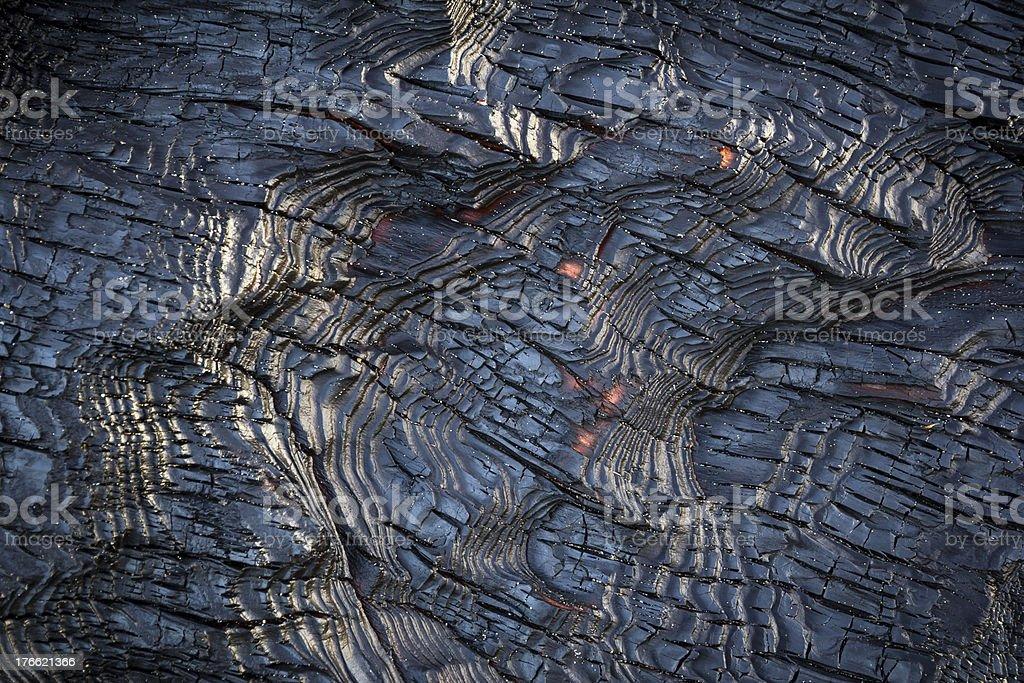 Burned Driftwood royalty-free stock photo