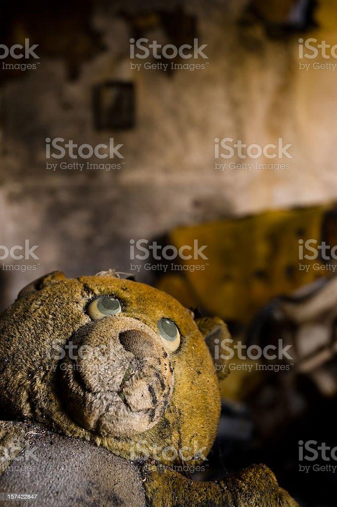 Burned teddy bear royalty-free stock photo
