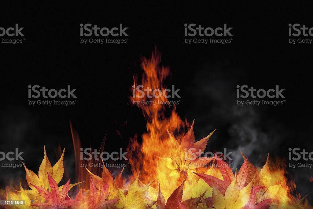 Burning Autumn Leaves royalty-free stock photo
