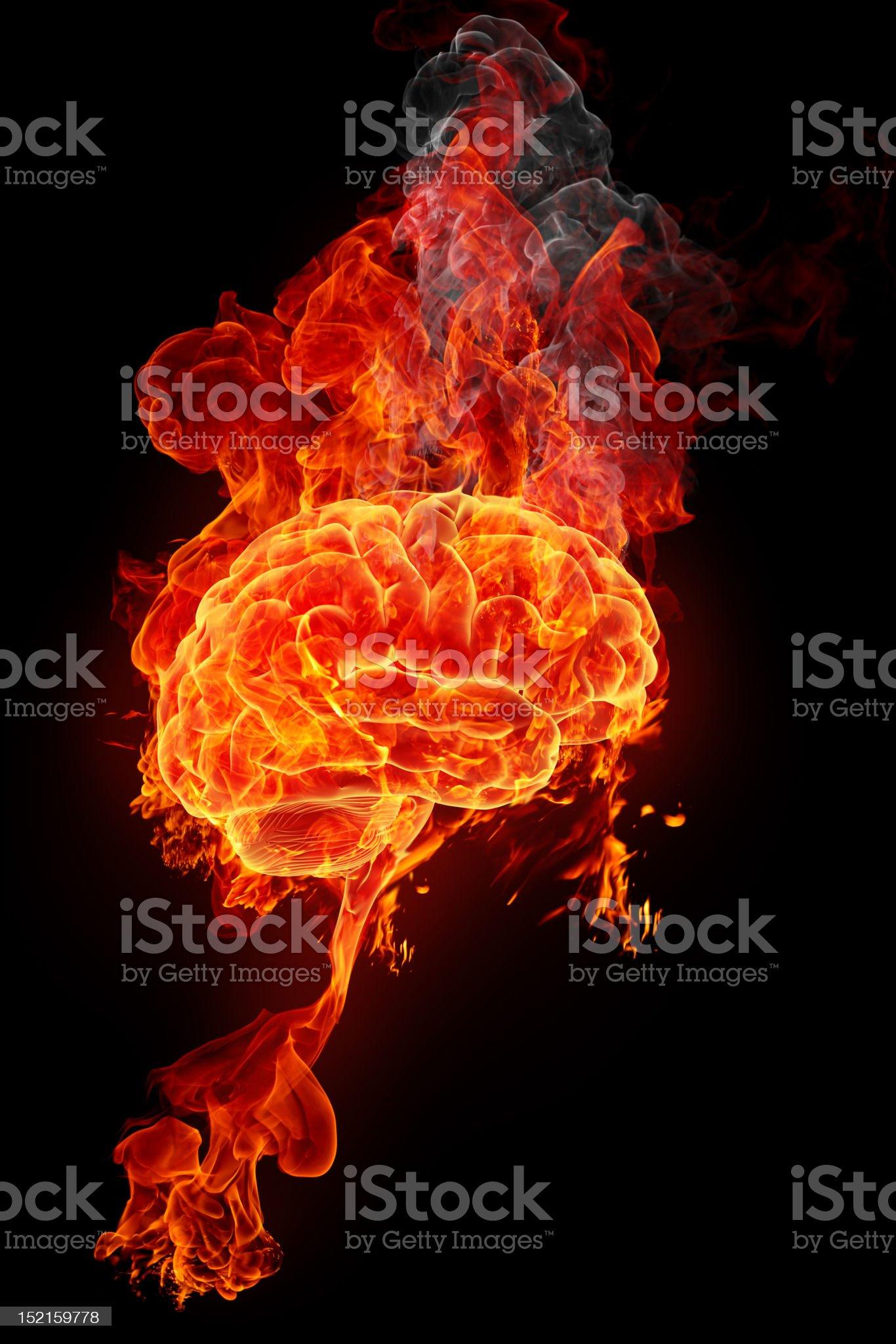 burning brain royalty-free stock photo