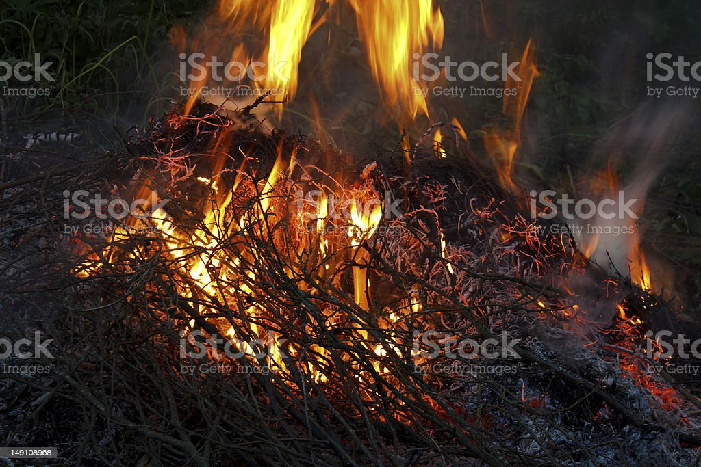 Burning branches royalty-free stock photo