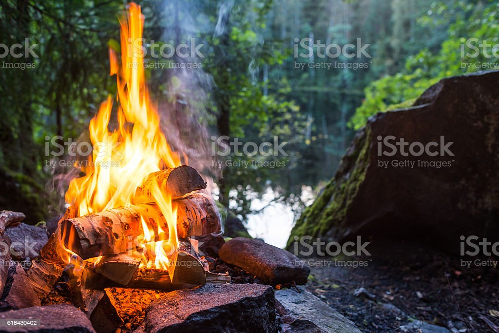 Burning campfire stock photo