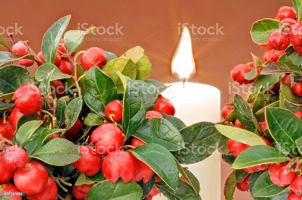 burning candle and red berries stock photo