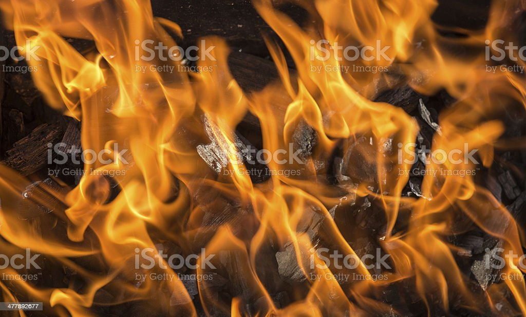 Burning coals royalty-free stock photo