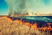 Burning grass