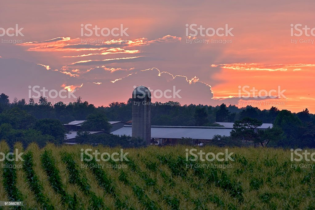 Burning North Carolina Sky stock photo