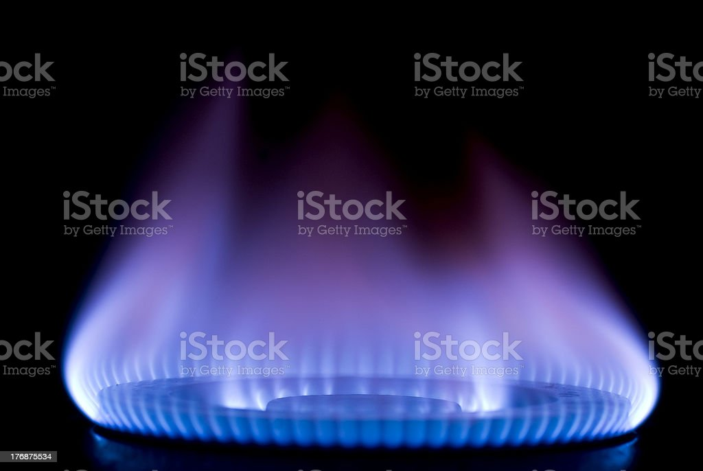 burning on a gas stove in the kitchen stock photo