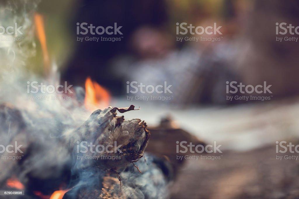 Burning piece of wood. stock photo