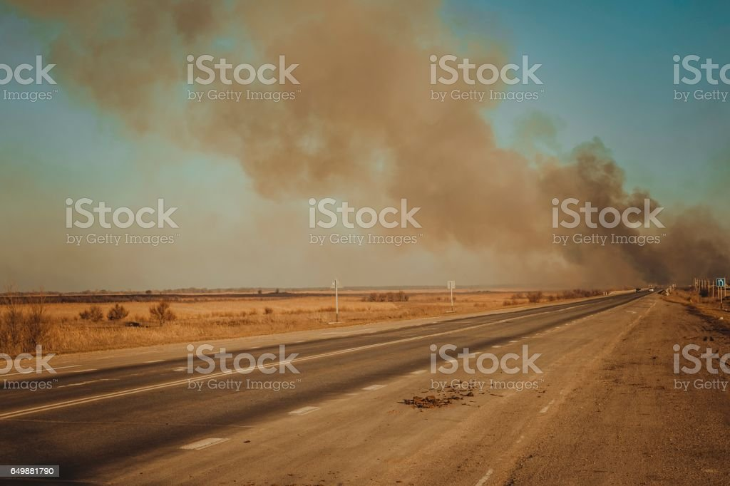 Burning steppe along the road. stock photo