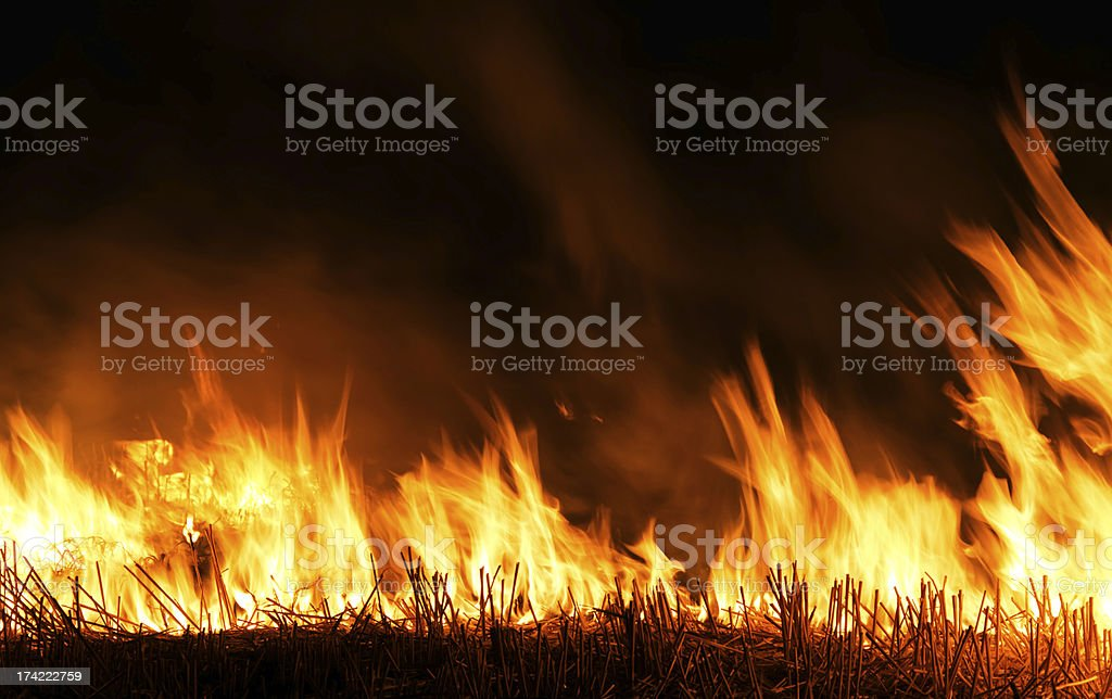 Burning Straws at night in Forest stock photo