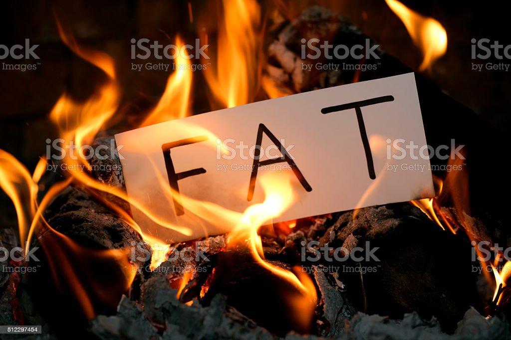 Burning the FAT stock photo