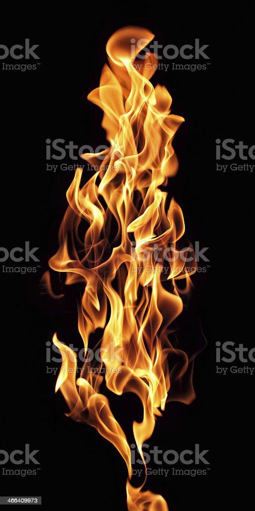 burning torch stock photo