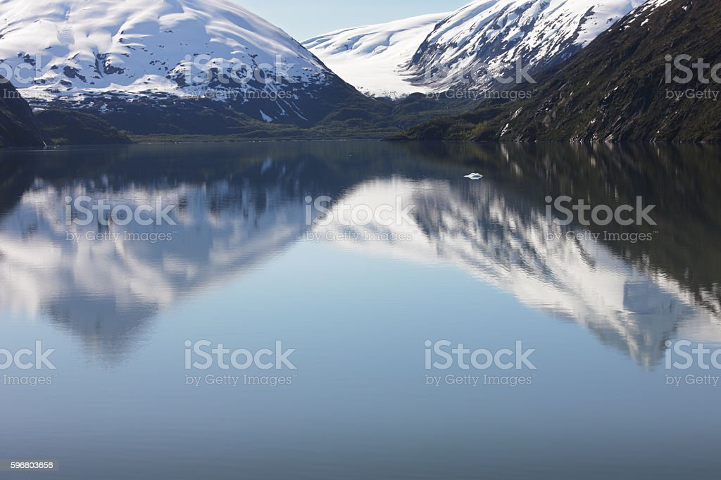 Burns Glacier Icefield Portage Lake Reflection stock photo