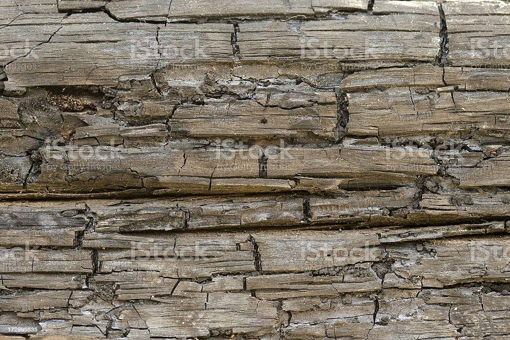 Burnt wood royalty-free stock photo