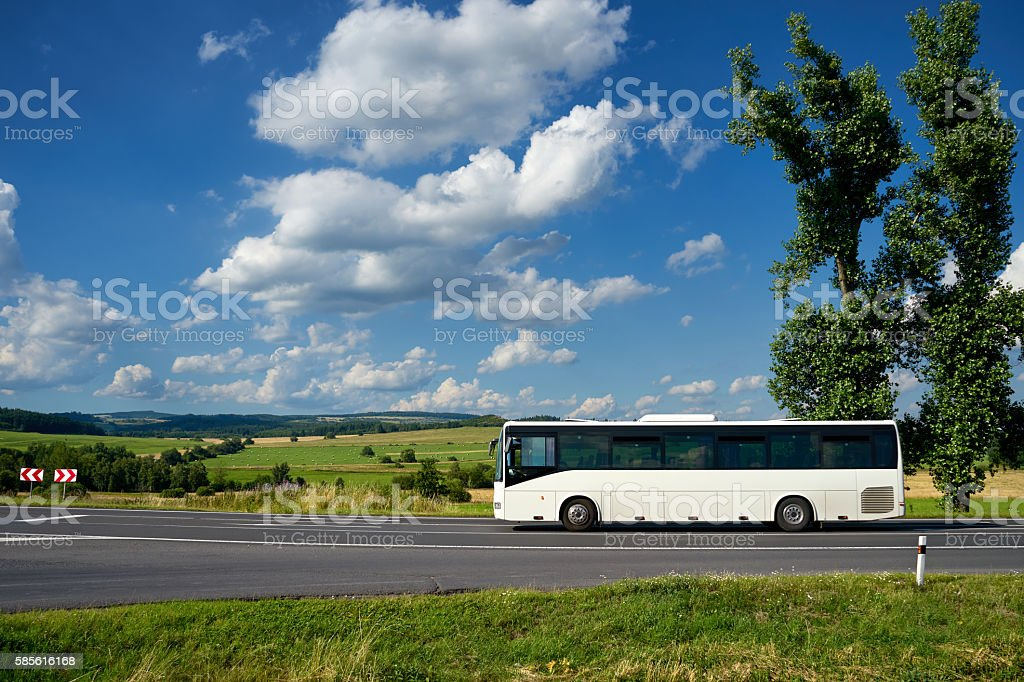 Bus driving on the road past the two tall cottonwoods. stock photo