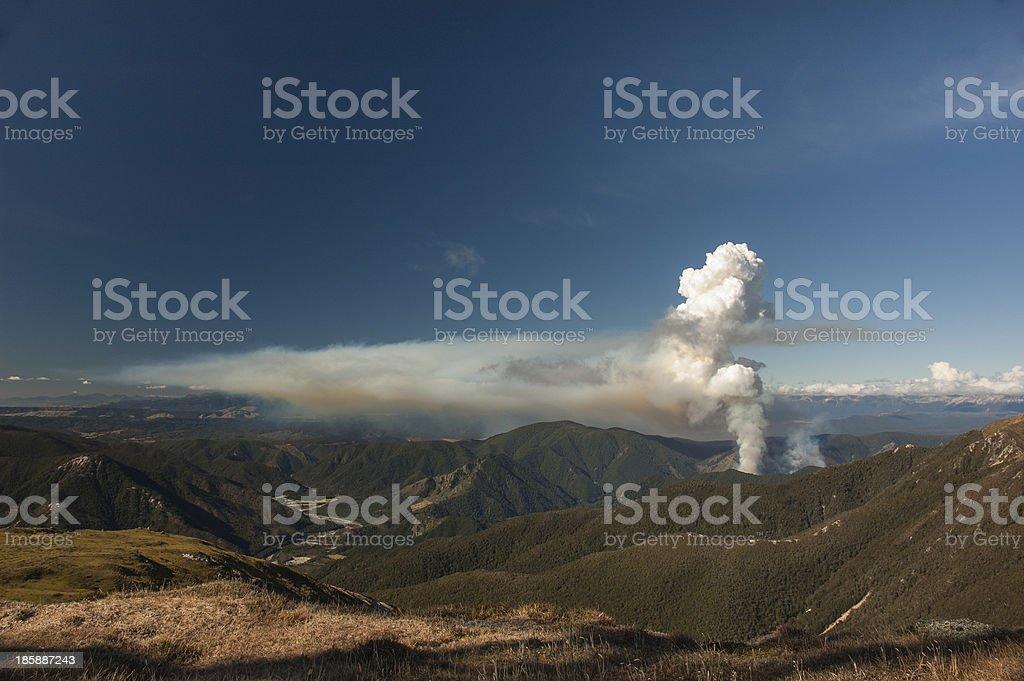 Bush Fire, Kahurangi National Park, New Zealand stock photo