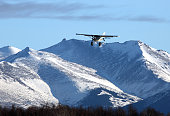 bush pilot landing plane