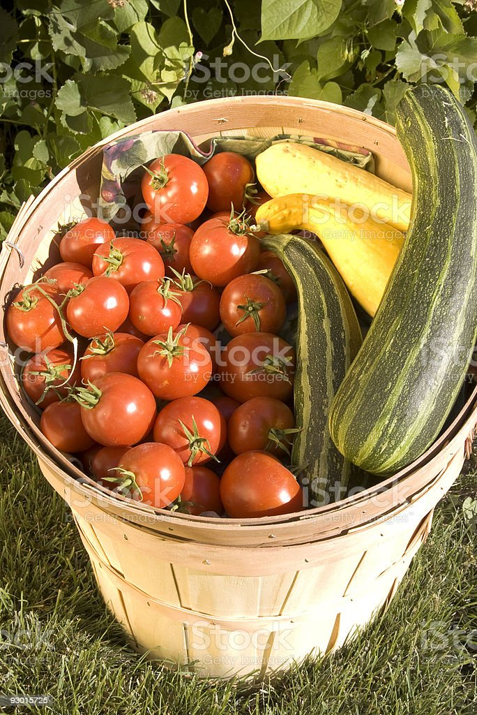 bushel basket of vegis stock photo