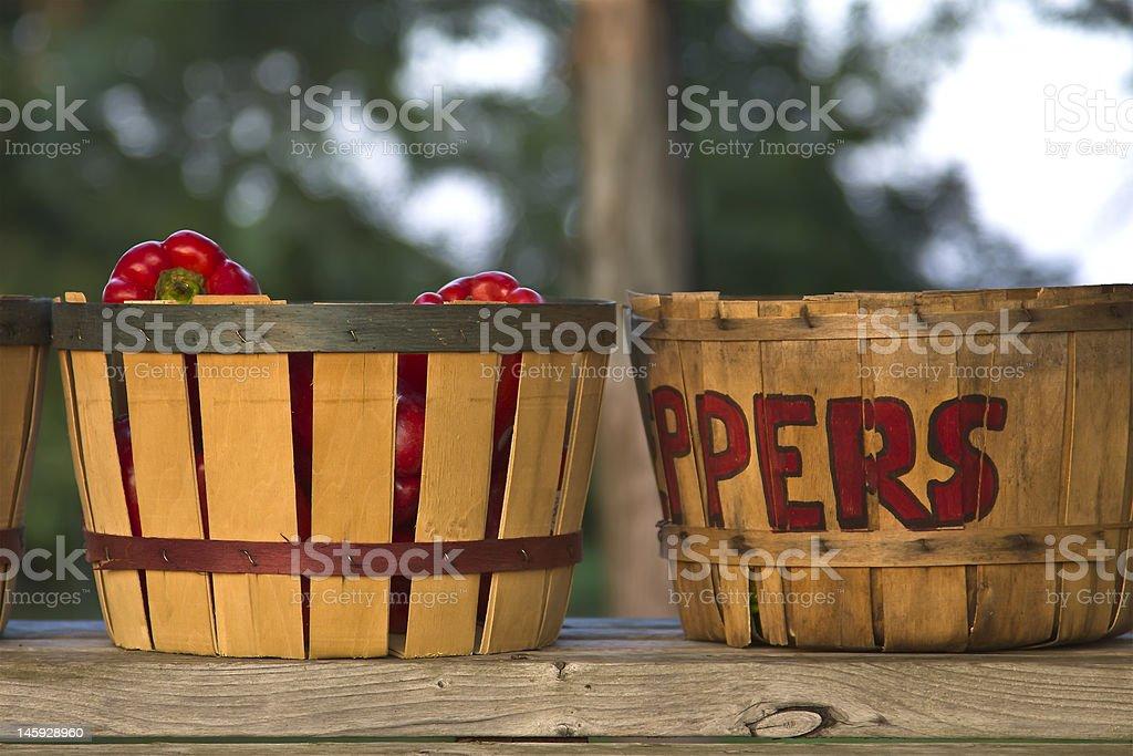 Bushel Basket Peppers royalty-free stock photo