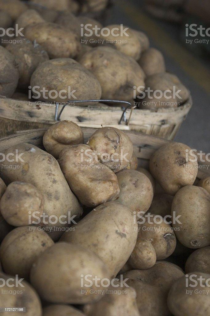 Bushel of Potatoes stock photo