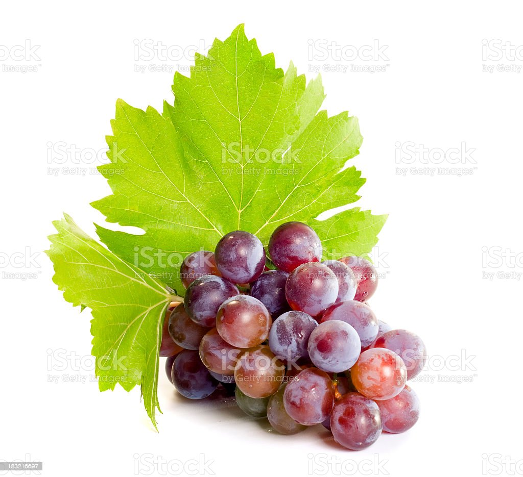 Bushel of ripe red grapes with leaves royalty-free stock photo