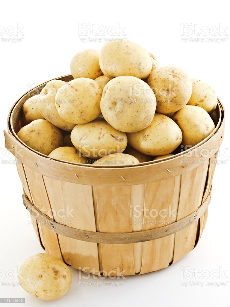 bushel of yukons stock photo