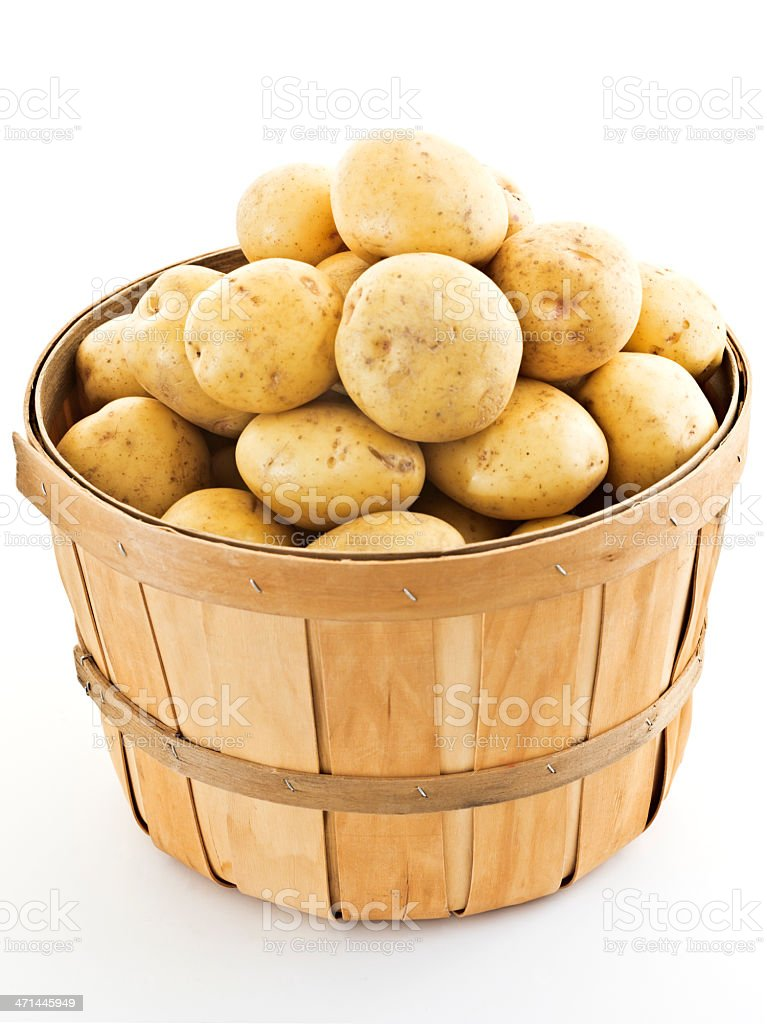 bushel of yukons stock photo