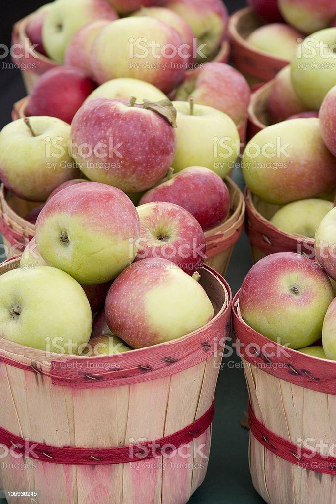 bushels of apples stock photo