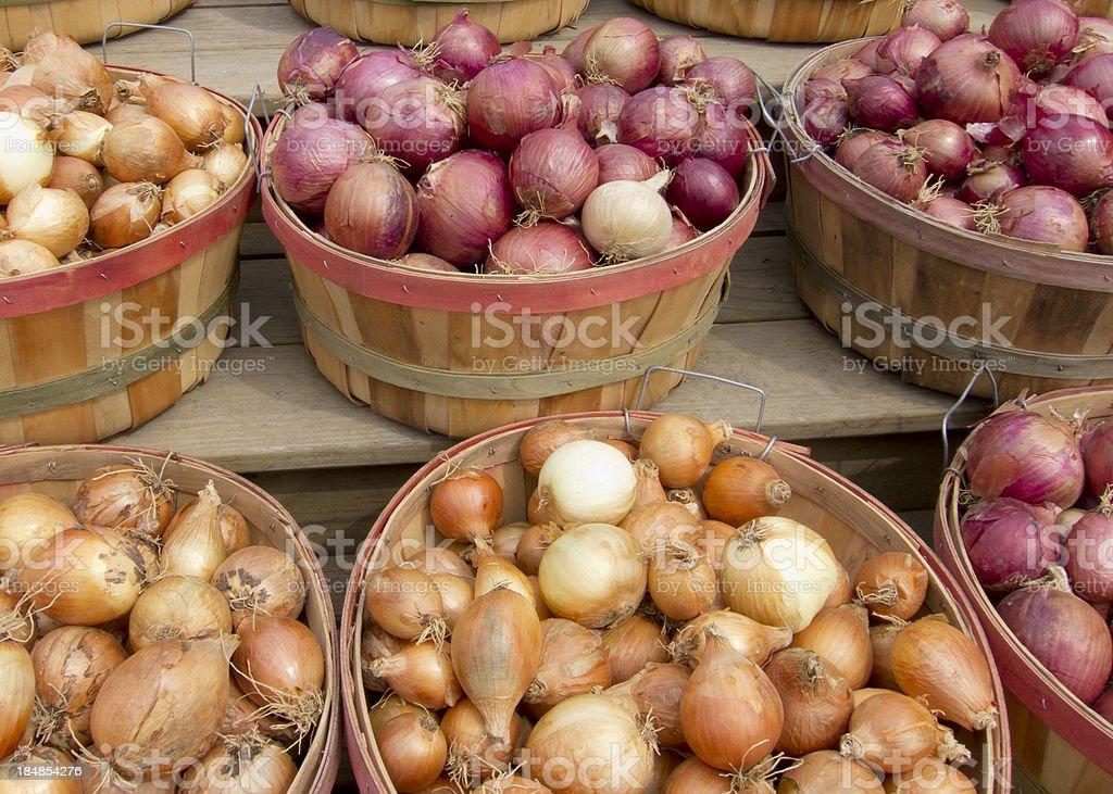 Bushels Of Onions stock photo